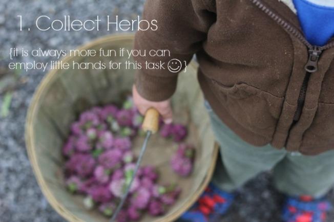 How to make Backyard Herbal Tea
