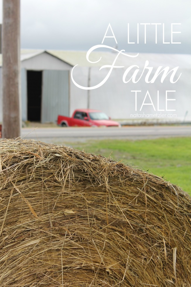 a little farm tale #humor #farming