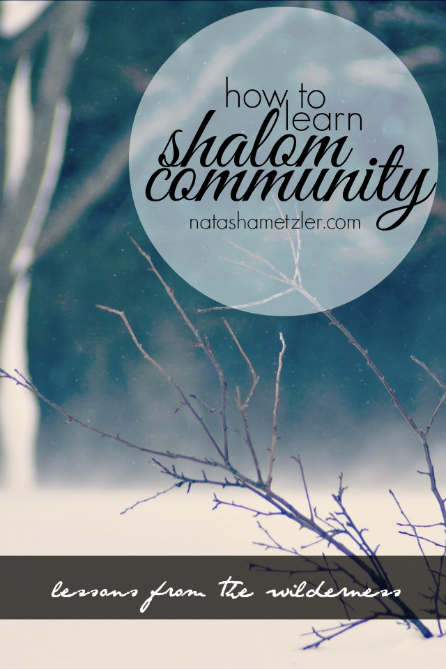 how to learn shalom community