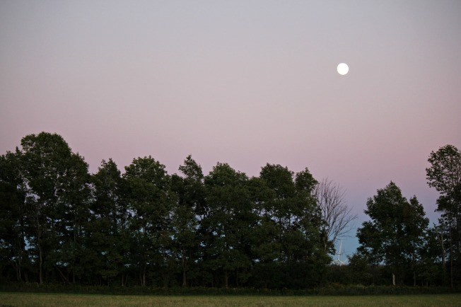 moon in a painted sky