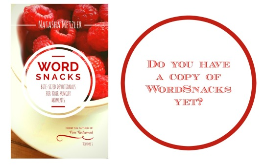 WordSnack Devotionals