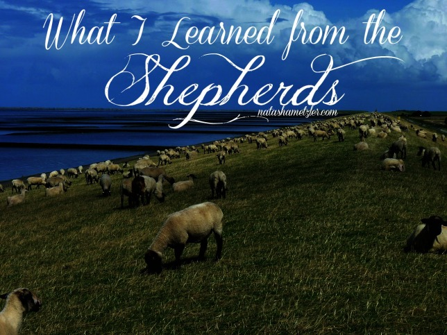 what I learned from the Shepherds